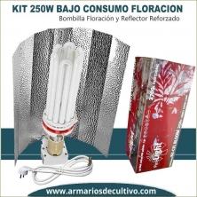 Kit Bajo Consumo 250w Floración