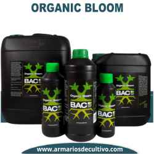 Organic Bloom