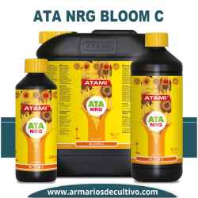 ATA NRG Bloom C