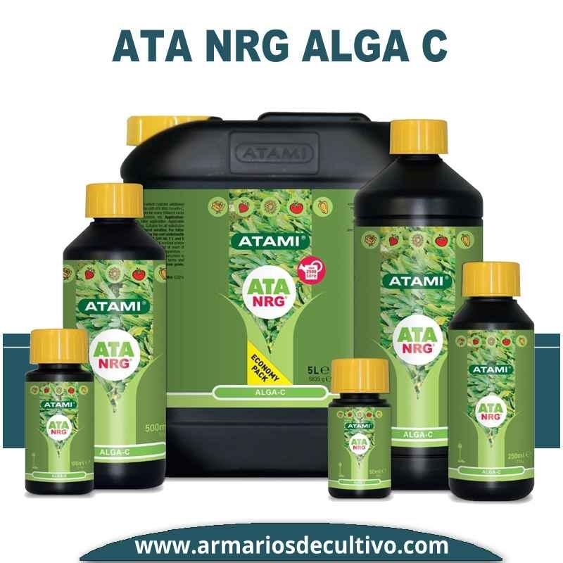 ATA NRG Alga C