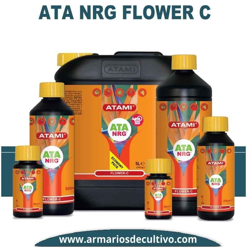 ATA NRG Flower C