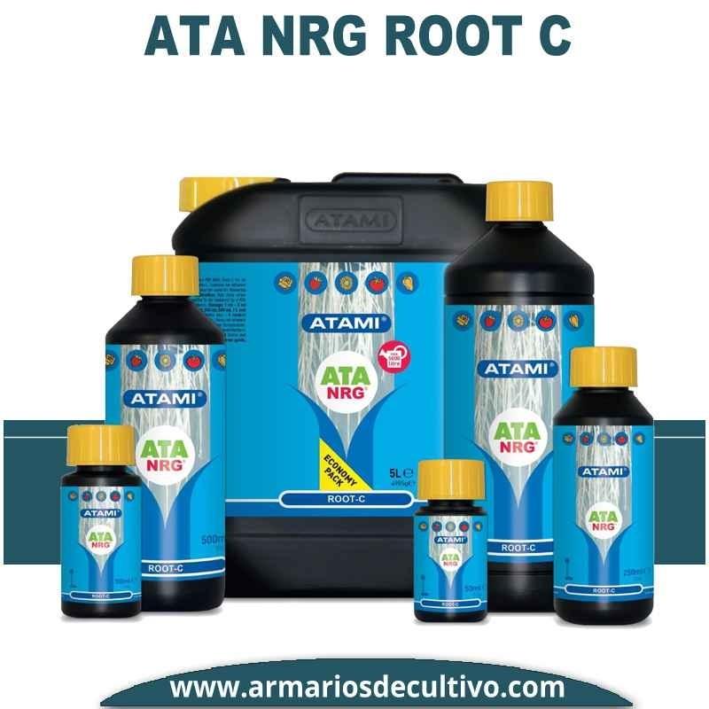 ATA NRG Root C