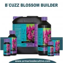 B'Cuzz Blossom Builder