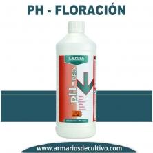 PH – Floración