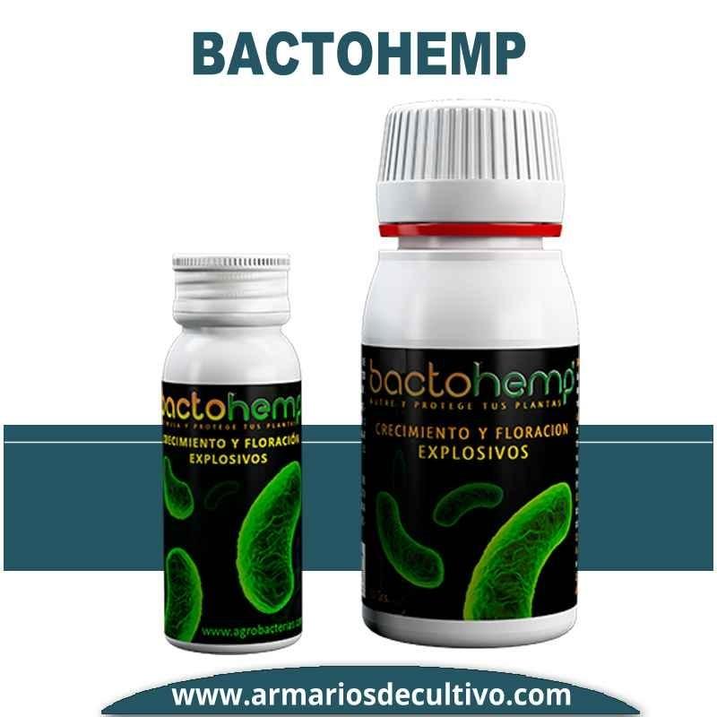 Bactohemp