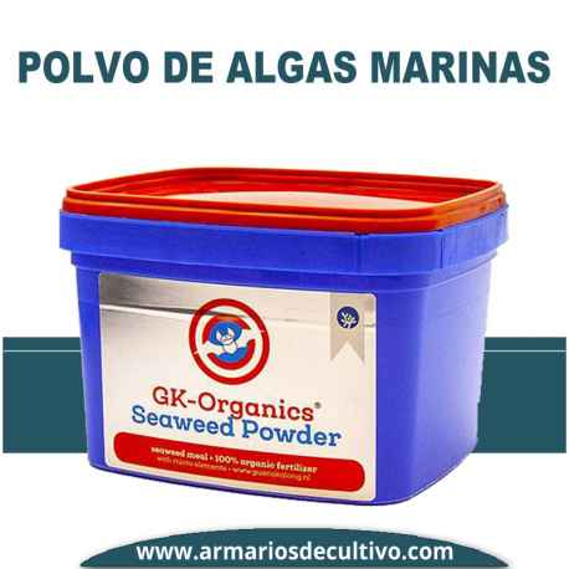Polvo de Algas Marinas