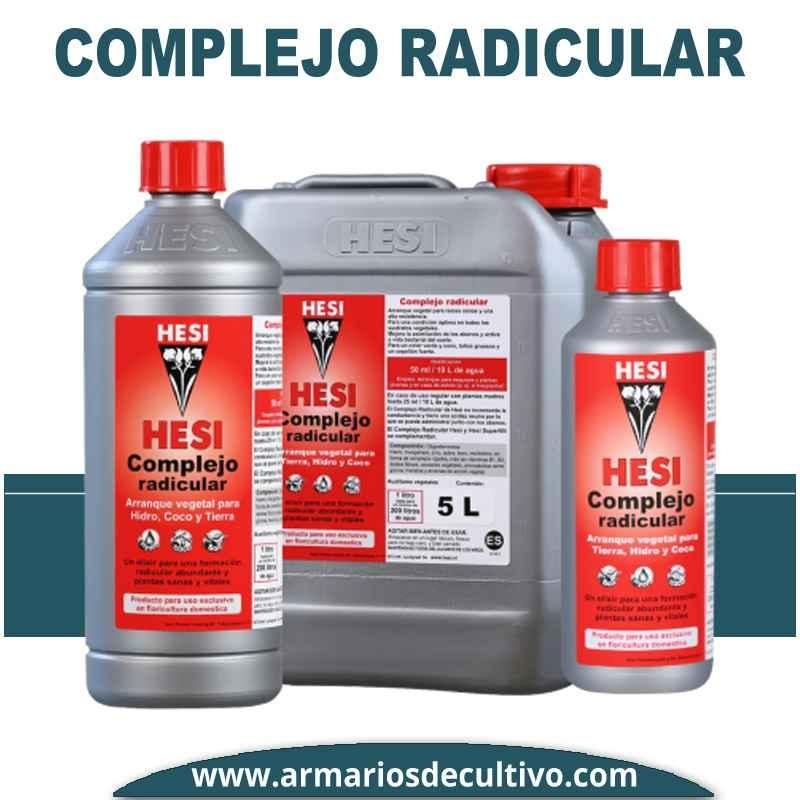 Complejo Radicular