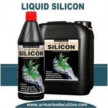 Liquid Silicon