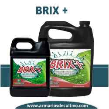 Brix +