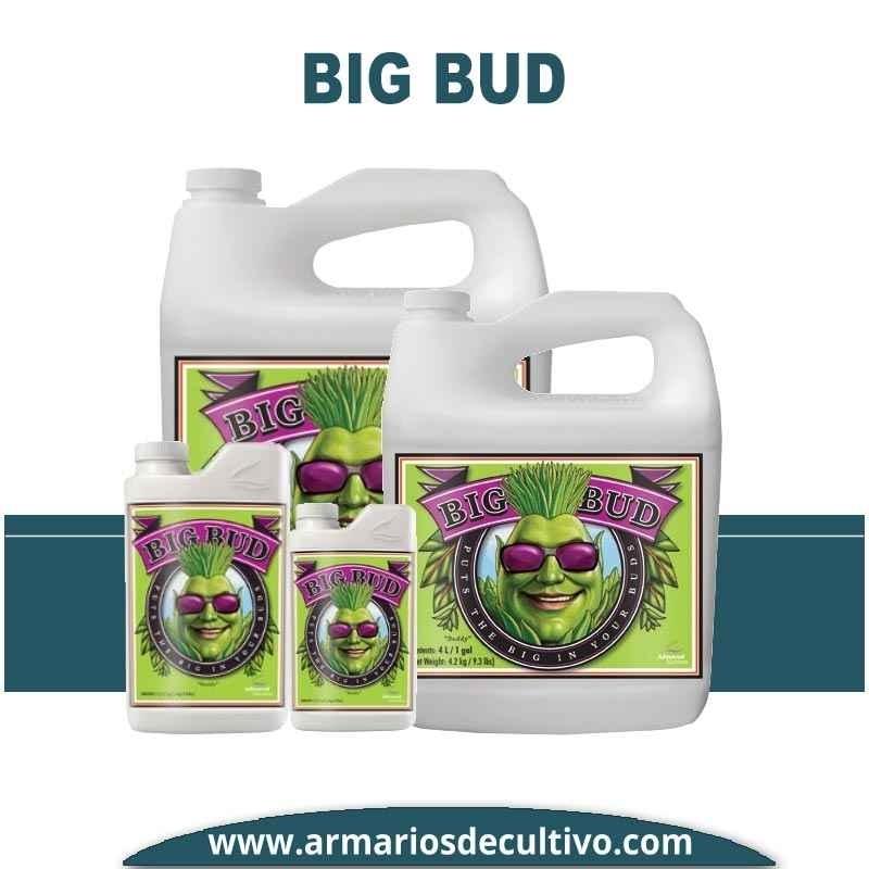 Big Bud Liquid