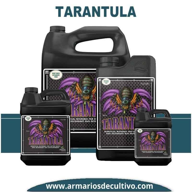 Tarantula Liquid
