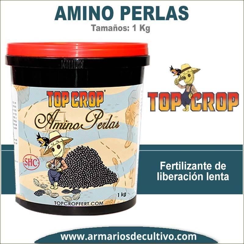 Amino Perlas (1 Kilo)
