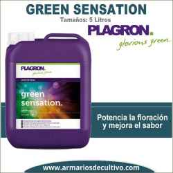 Green Sensation (5 Litros)